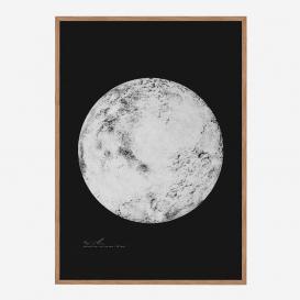 Not the Moon PNCK Siebdruck>     </noscript> </div>          <div class=