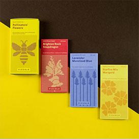 Pollinators Seed Collection - 3 Sorten Samen>     </noscript> </div>          <div class=
